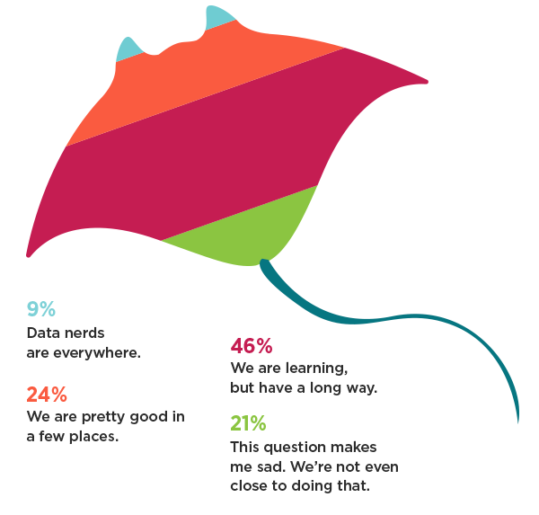Companies' level of maturity in using data to make software decisions.